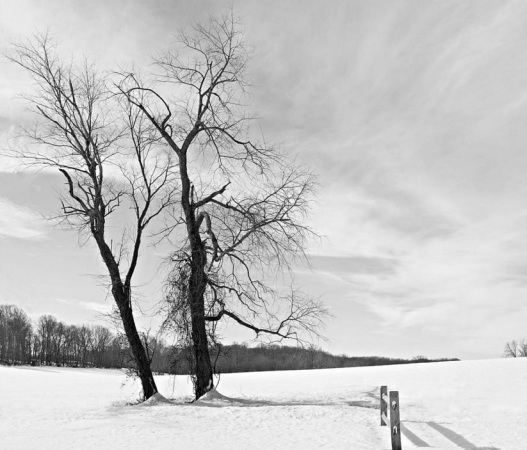 160304_WinterHike