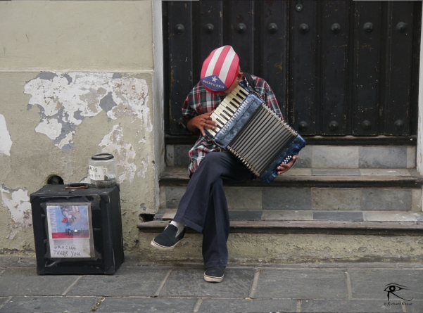 Accordion Player - Richard Reeve