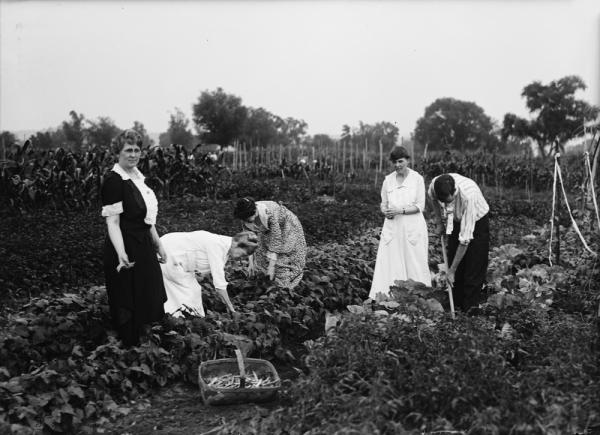 160407_Gardening
