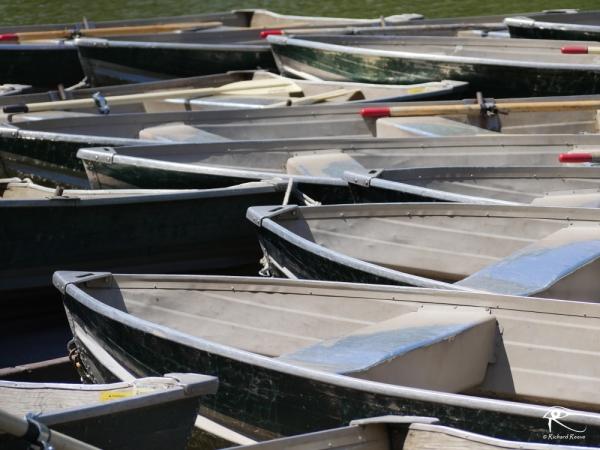 161002_r2bcheerful1_boats.JPG